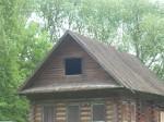 house in the trees, inspiration for Mrs Feshina's izba
